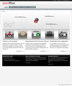 Sourcefuse Website 2009-11